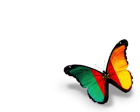 Cameroon flag butterfly, isolated on white background Stock Photo - 14794198