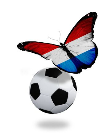 ball like: Concept - butterfly with Luxembourg flag flying near the ball, like football team playing