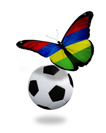 ball like: Concept - butterfly with Mauritius flag flying near the ball, like football team playing