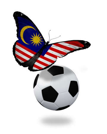 Concept - butterfly with Malaysian flag flying near the ball, like football team playing   photo