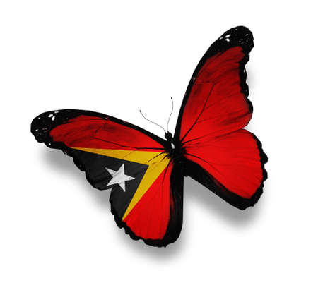 East Timor flag butterfly, isolated on white photo