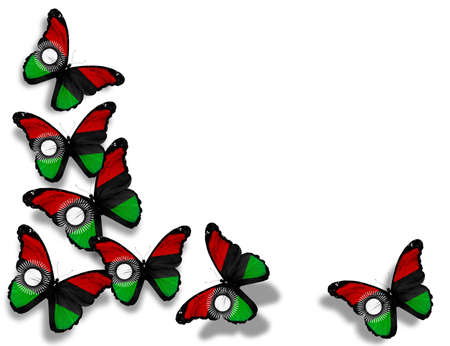 malawi flag: Malawi flag butterflies, isolated on white background