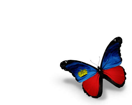 Liechtenstein flag butterfly, isolated on white background photo