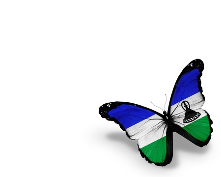 Kingdom Lesotho flag butterfly, isolated on white background photo