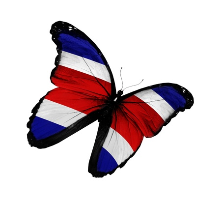Costa Rica flag butterfly flying, isolated on white background photo