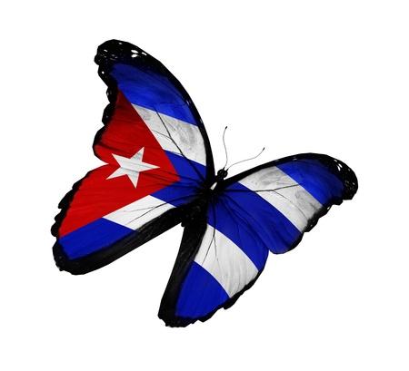 bandera cuba: Bandera cubana mariposa volando, aislado sobre fondo blanco