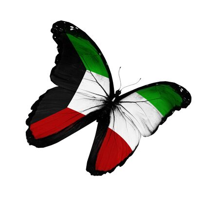 kuwait: Kuwaiti flag butterfly flying, isolated on white background