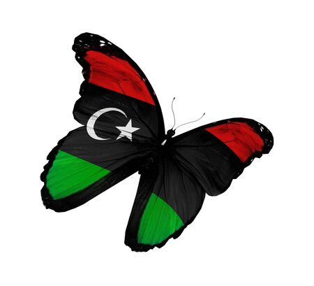 libya: Libyan flag butterfly flying, isolated on white background Stock Photo