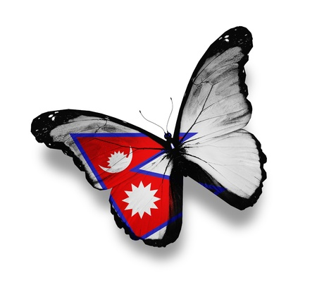 Nepal flag butterfly, isolated on white photo