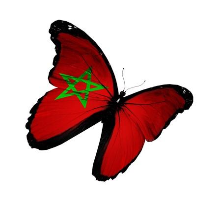 marocchini: Bandiera marocchina farfalla volare, isolato su sfondo bianco