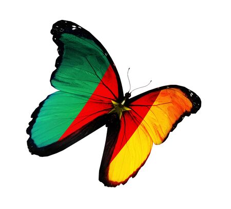 Cameroon flag butterfly flying, isolated on white background Stock Photo - 15192094