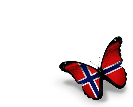 norwegian: Norwegian flag butterfly, isolated on white background
