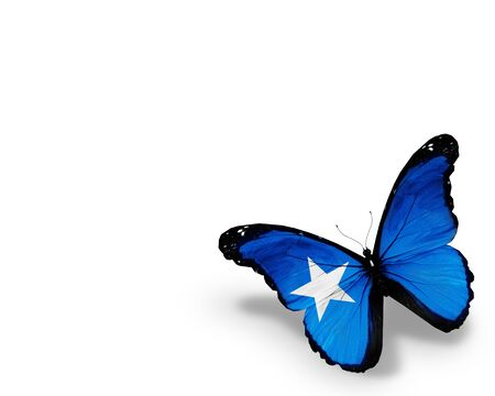 somalian: Somalian Islands flag butterfly, isolated on white background Stock Photo