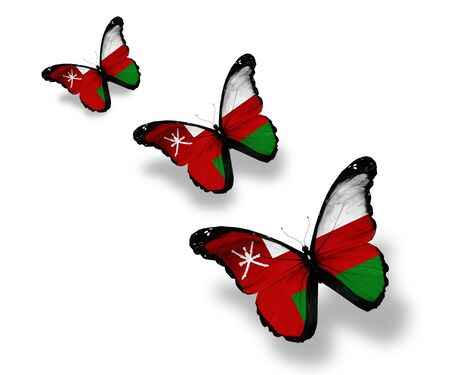Three Omani flag butterflies, isolated on white photo