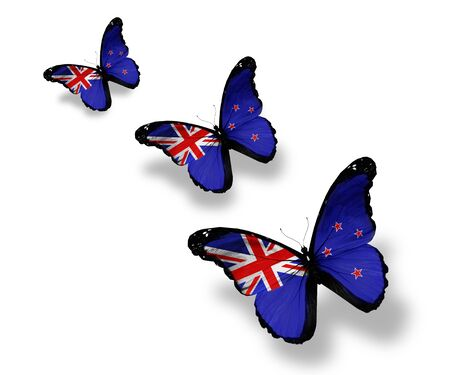 flag of new zealand: Three New Zealand flag butterflies, isolated on white Stock Photo