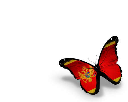 Montenegro flag butterfly, isolated on white background photo