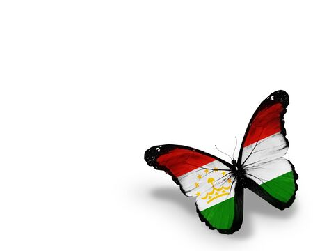 spring  tajikistan: Tagiko bandiera farfalla, isolato su sfondo bianco