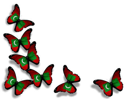 maldivian: Maldivian flag butterflies, isolated on white background Stock Photo