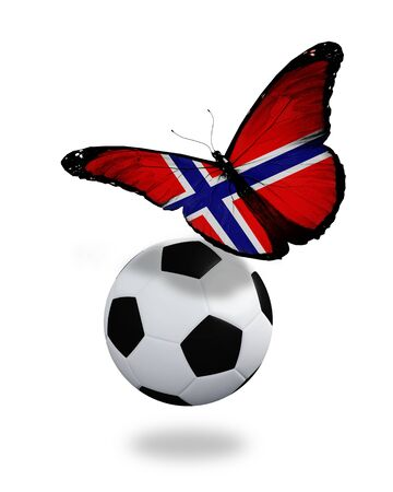 ball like: Concept - butterfly with Norwegian flag flying near the ball, like football team playing