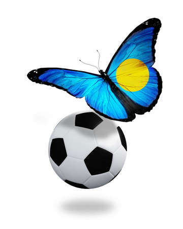 ball like: Concept - butterfly with Palau flag flying near the ball, like football team playing   Stock Photo
