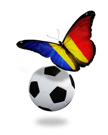 ball like: Concept - butterfly with Romanian flag flying near the ball, like football team playing   Stock Photo