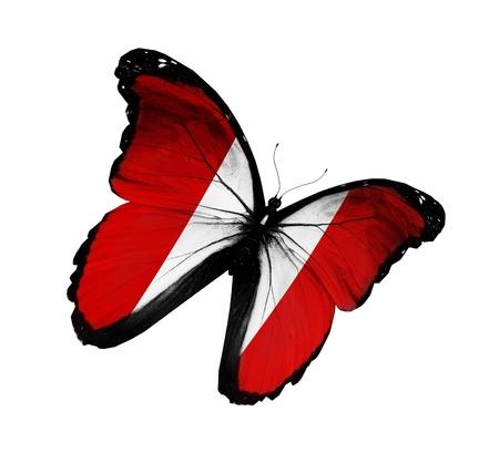 bandera peru: Bandera peruana de mariposas volando, aislado sobre fondo blanco Foto de archivo