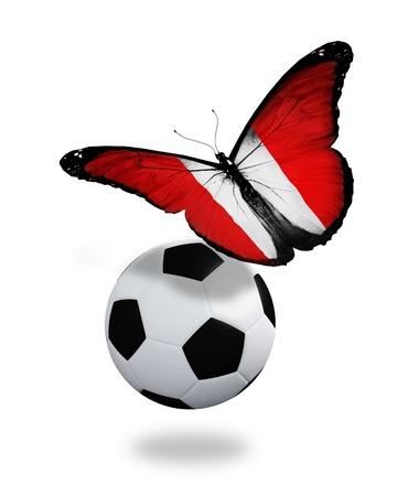 bandera peru: Concepto - mariposa con bandera peruana volando cerca de la pelota, como el equipo de f�tbol que juega Foto de archivo