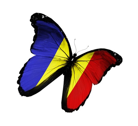 romanian: Romanian flag butterfly flying, isolated on white background