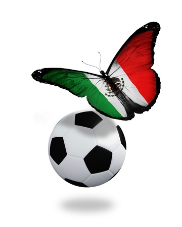 ball like: Concept - butterfly with Mexican flag flying near the ball, like football team playing