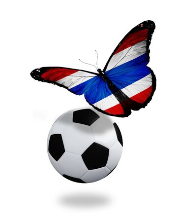 penalty flag: Concept - butterfly with Thailand flag flying near the ball, like football team playing