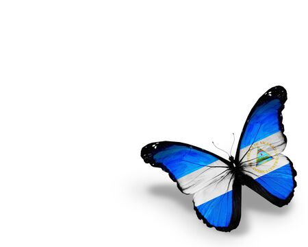 Nicaragua flag butterfly, isolated on white background photo