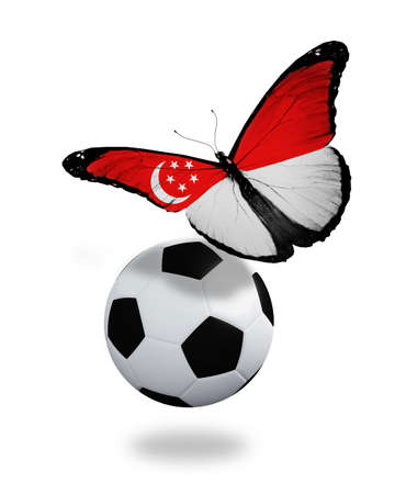 singaporean flag: Concept - butterfly with Singaporean flag flying near the ball, like football team playing   Editorial