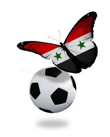 ball like: Concept - butterfly with Syrian flag flying near the ball, like football team playing