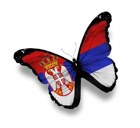 Republic of Serbia flag butterfly, isolated on white Stock Photo - 15071317