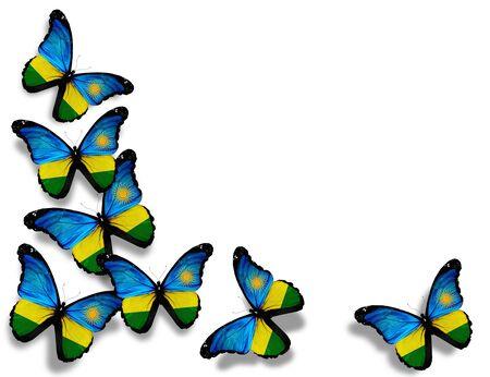 Rwanda flag butterflies, isolated on white background photo