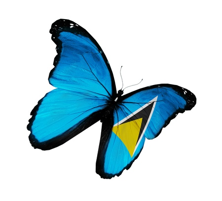 saint lucia: Saint Lucia flag butterfly flying, isolated on white background