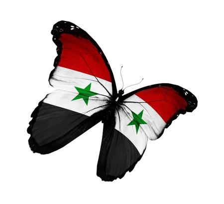 Syryjski: Syryjska flaga motyl latający, na białym tle