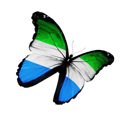 Sierra Leone flag butterfly flying, isolated on white background photo