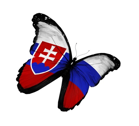 slovakia flag: Slovakian flag butterfly flying, isolated on white background