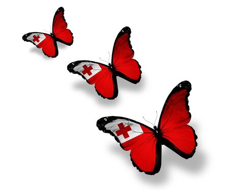 Three Tonga flag butterflies, isolated on white