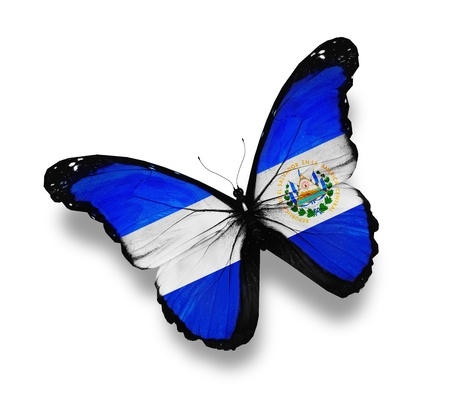 el salvador: Salvador flag butterfly, isolated on white Stock Photo