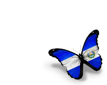 el salvador: Salvador flag butterfly, isolated on white background Stock Photo