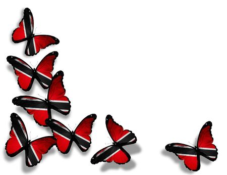 Trinidad and Tobago flag butterflies, isolated on white background photo