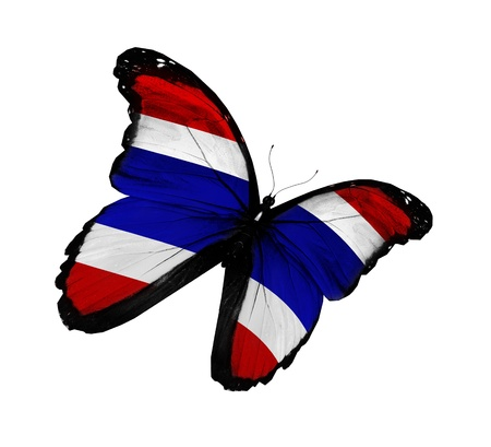 Thai flag butterfly flying, isolated on white background photo