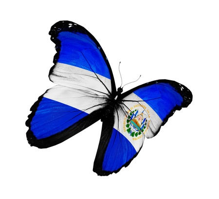 el salvador flag: Salvador flag butterfly flying, isolated on white background