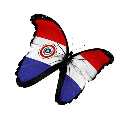 Paraguay flag: Bandera paraguaya mariposa volando, aislado sobre fondo blanco