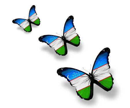 uzbek: Three Uzbek flag butterflies, isolated on white
