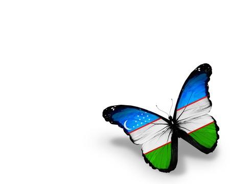 uzbek: Uzbek flag butterfly, isolated on white background Stock Photo