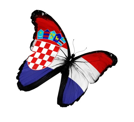 Croatian flag butterfly flying, isolated on white background Stock Photo