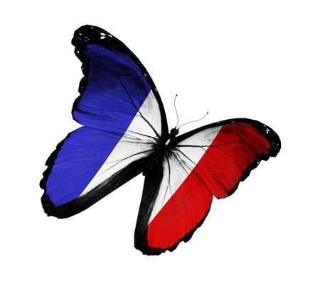 bandera francia: Franc�s bandera mariposa volando, aislado sobre fondo blanco